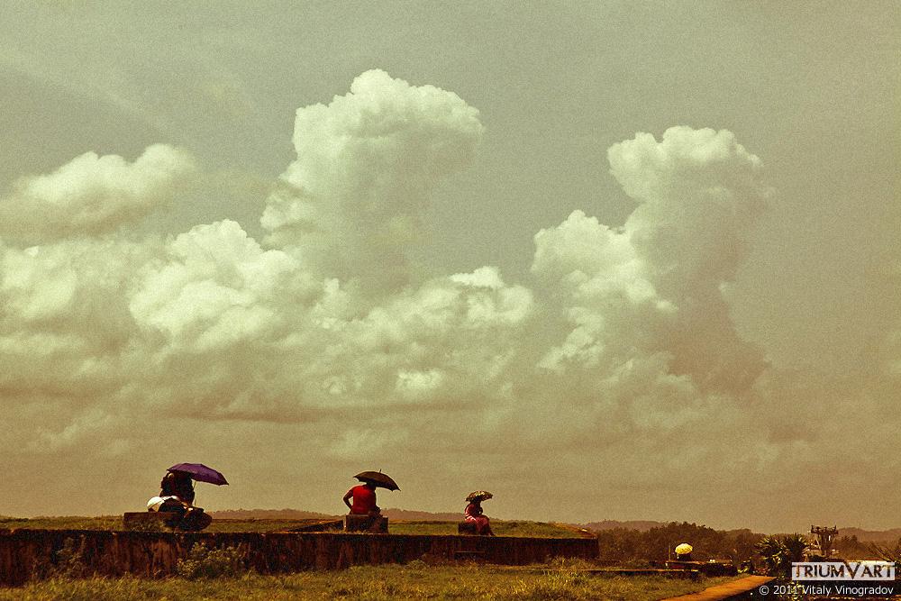 солнечные зонтики