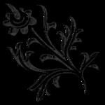 «Charcoal par PubliKado.PU-CU.GR» 0_60a8a_ab16dcec_S