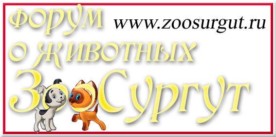 http://img-fotki.yandex.ru/get/5907/123262551.4/0_718f7_b93d27b7_XL.jpg