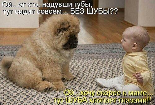 https://img-fotki.yandex.ru/get/5907/37228632.d/0_92a4b_f27e347a_L.jpg
