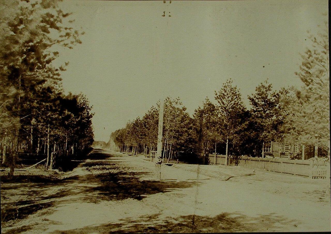 24. Вид одной из улиц посёлка у станции Бочкарёво. Амурская обл. 1910-1914