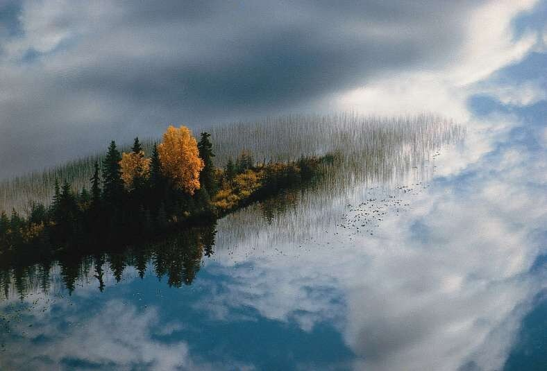 Мир глазами Яна Артюса-Бертрана (Yann Arthus-Bertrand)