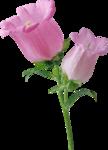 «Сладкая весна» 0_607a6_a1281316_S