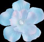 «голубая любовь»  0_62328_37d90037_S