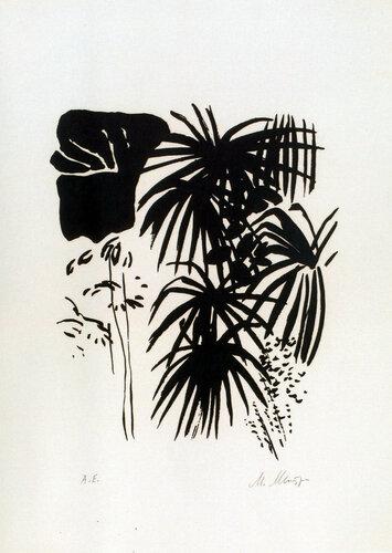 Тропические растения. Автолитография. 1990.jpg