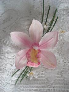 Орхидеи       - Страница 2 0_882cb_5be32ea3_M