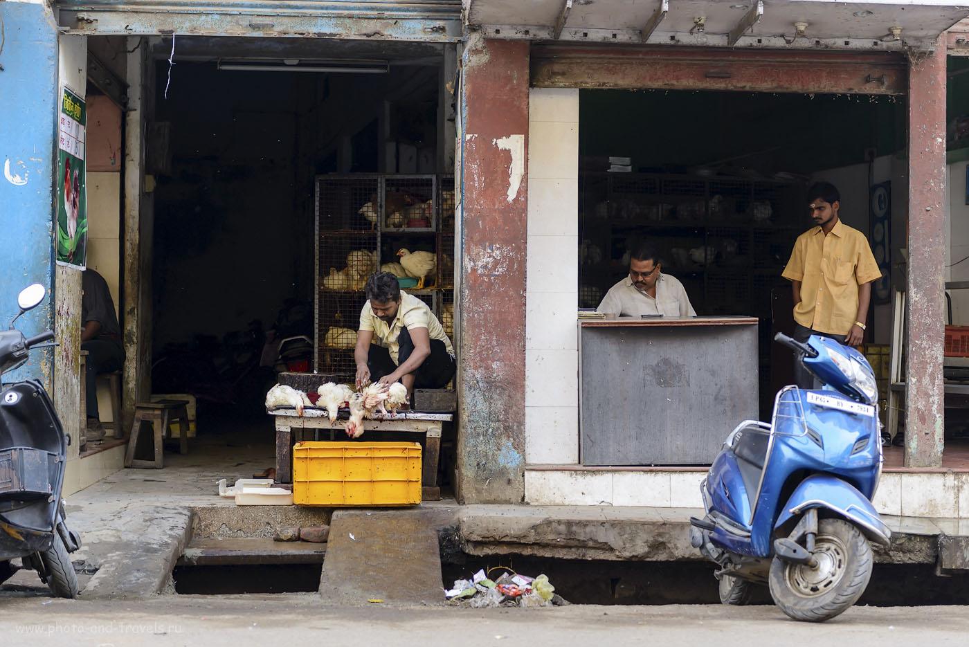 Фото 16. И такое бывает в священном городе Бенарес в Индии. 1/150, 2.8, 250, 62.