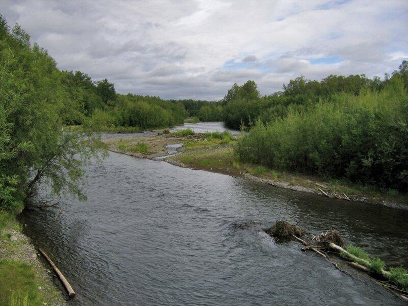 Берег реки Быстрой