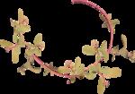 «CG_Flowers-for-you»  0_639f4_757e204b_S