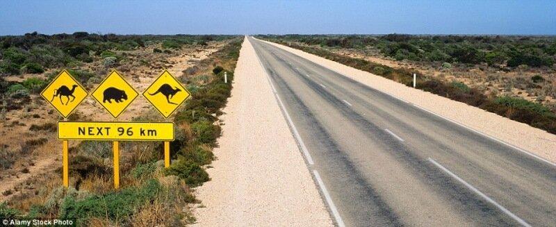 Самые странные и удивительные дороги в мире!