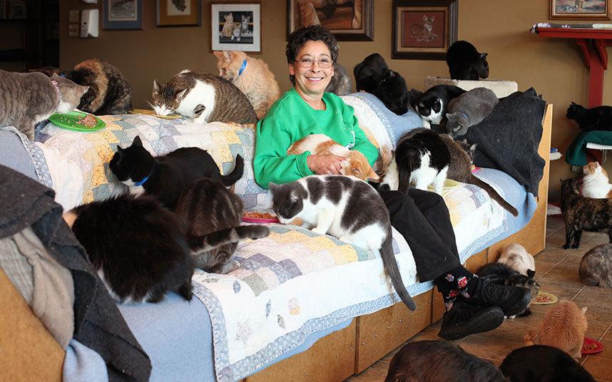 Главной целью, однако, является найти котикам новый дом. Она не берет их для себя. Она надеется пода