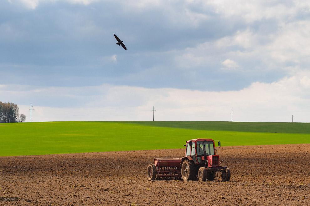 5. Среди этих полей в радиусе 100 км от Минска разбросаны немногочисленные достопримечательност