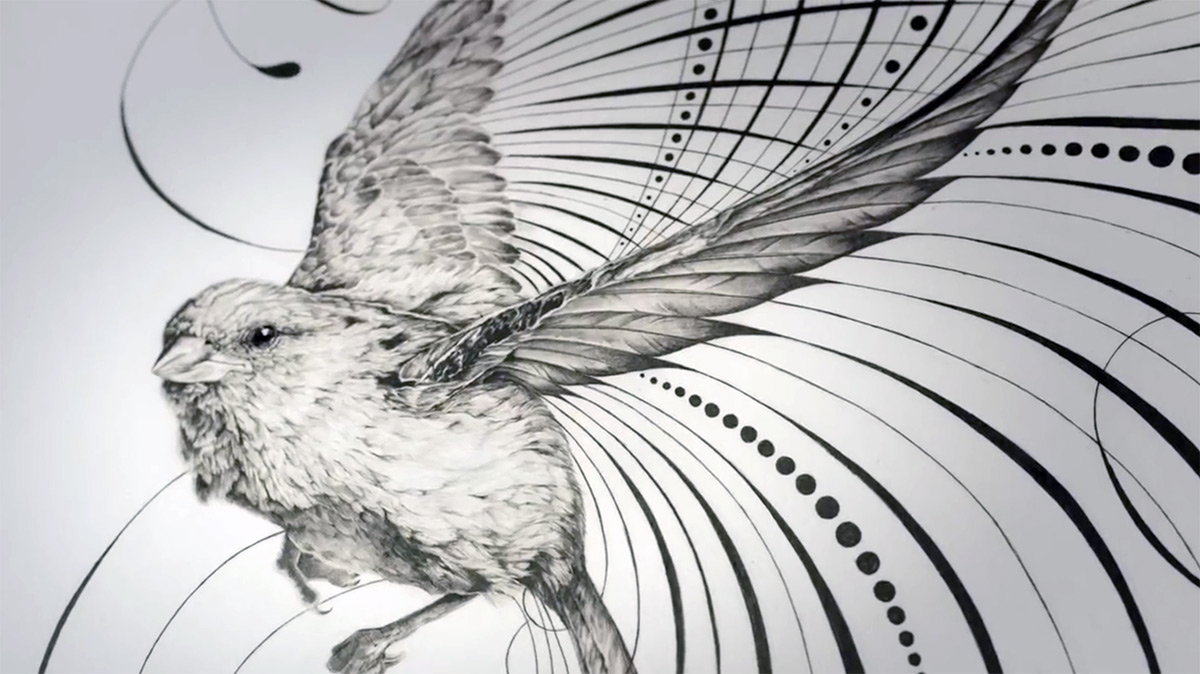 The Incredible Pencraft of Jake Weidmann, the World's Youngest Master Penman