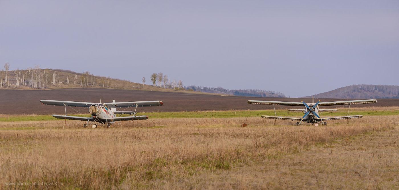 Фотография 26. Сто лет не видел кукурузников, используемых для опыления полей. В Челябинской области их используют до сих пор. 1/500, 4.8, 250, 125.