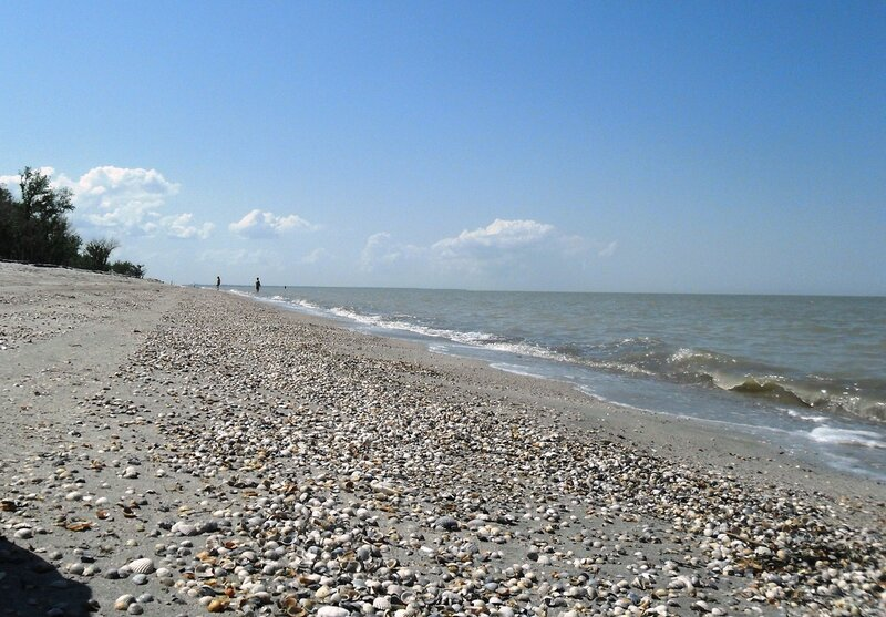 Летний берег... Море ... SAM_8809.JPG