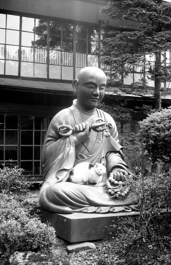 Japan, cat sitting on lap of statue of Kobo Daishi, ca. 1950s