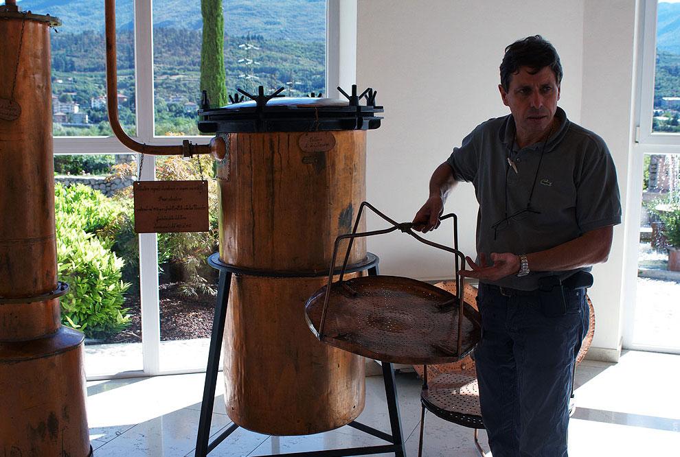 Граппу делают из виноградных отжимок которые остаются после отжима винограда для производства в