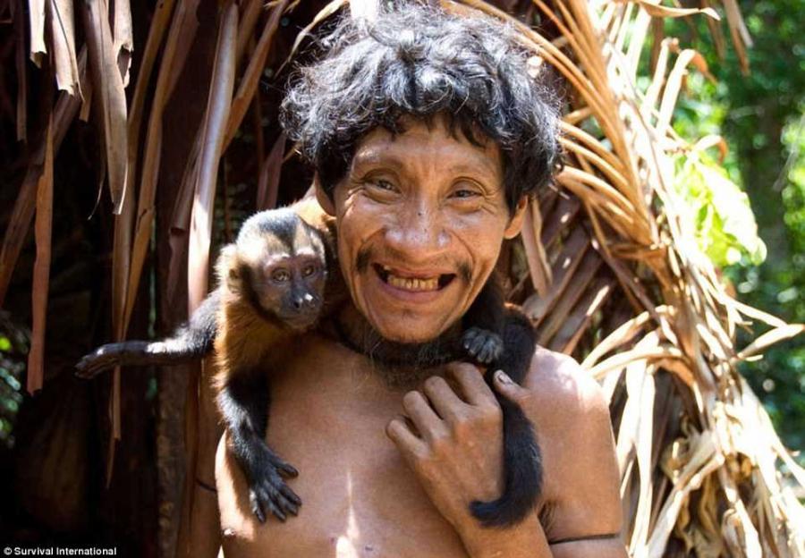 5. Люди племени Ава держат диких свиней, белок, попугаев и крупных грызунов агути, но их любимые пит