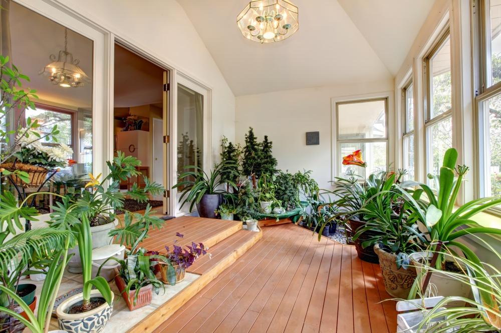 Засадите квартиру горшечными цветами. Они совсем недорогие, особенно нарынках, акак радуют глаз.