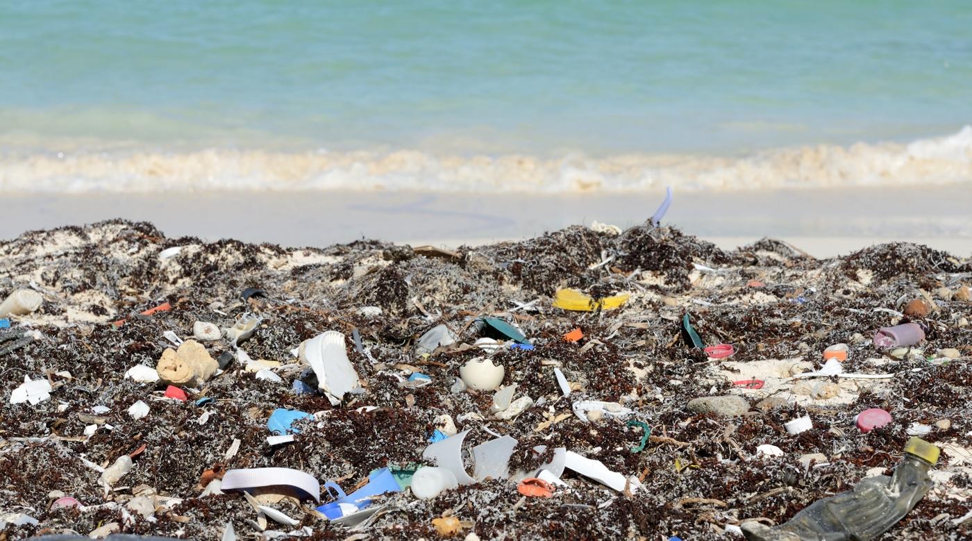 Путешествие мусора. В Университете Санта-Клары есть курс, на котором изучают, что происходит с мусор