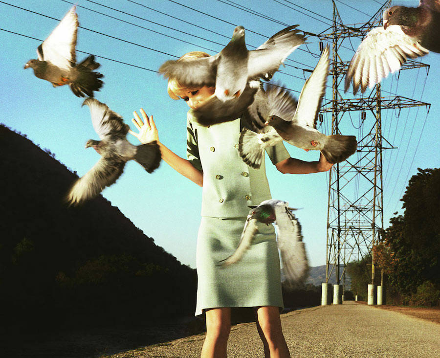 Hitchcockian Photography Between Fiction and Reality