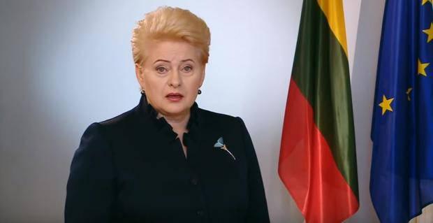 """""""Творите свою страну - свою мечту!"""": Президент Литвы поздравила украинцев с Днем Независимости (видео)"""