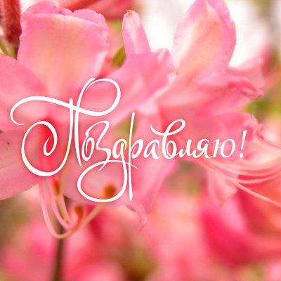 Открытки. С днем социального работника. Поздравляю! Надпись на фоне цветущих розовых цветов открытки фото рисунки картинки поздравления