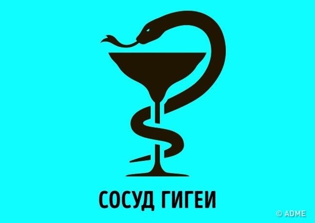 Чаша созмеем— символ Гигеи , древнегреческой богини здоровья. Отимени этой богини произошел терми
