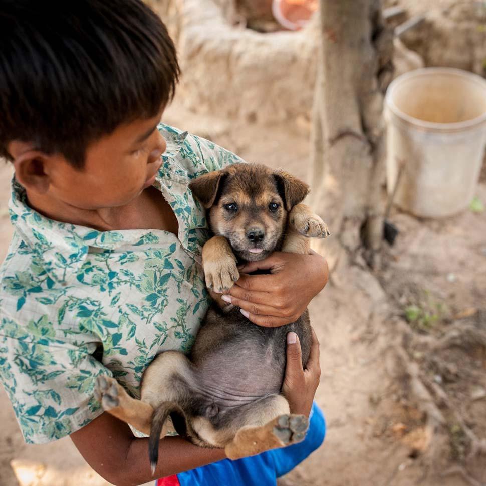 Камбоджа, семейный доход — 463 доллара на взрослого в месяц. Любимая игрушка — щенок.