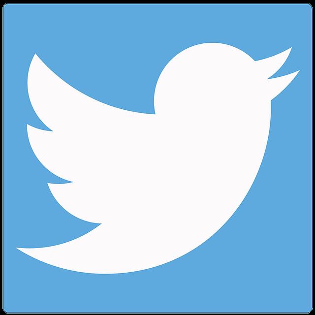 Функция самоцитирования сейчас доступна вмикроблоге социальная сеть Twitter