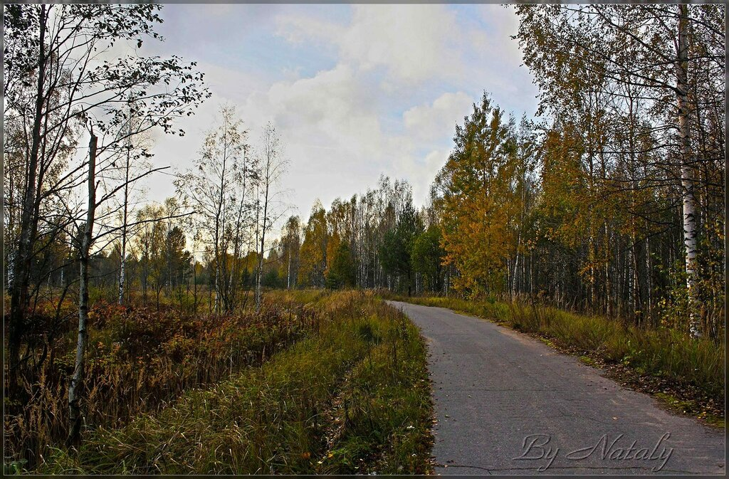 Дорога в октябрь