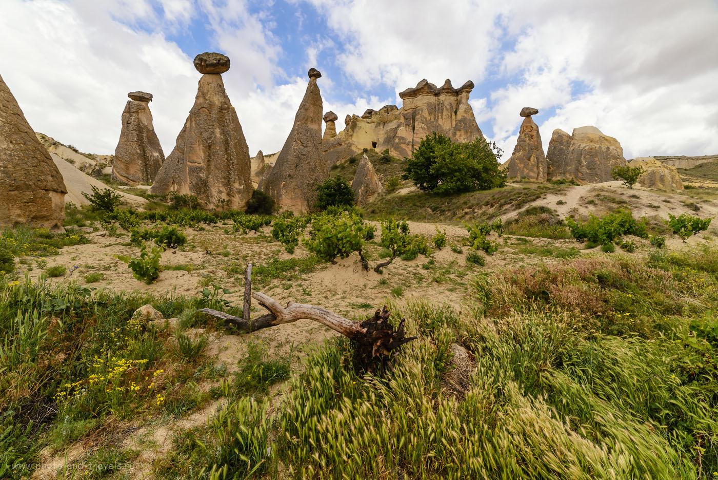 Фото 1. Скалы-«грибы» - наверное, одна из визитных карточек Каппадокии. Отзывы туристов об отдыхе в Турции самостоятельно. Снято на полнокадровую камеру Nikon D610 с широкоугольным объективом Samyang 14mm f/2.8 со следующими настройками: выдержка 1/320, экспокоррекция «-0.33EV», диафрагма f/9.0, ISO 160, фокусное расстояние 14 мм.