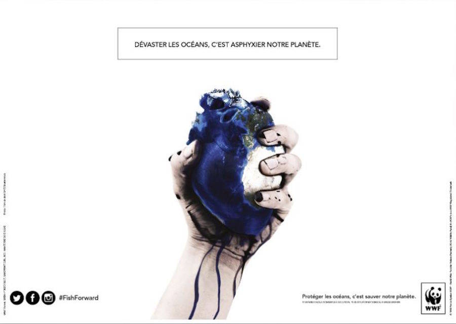 Accurate Awareness Campaign Contest for WWF
