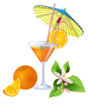 Summer_Orange_Cocktail_PNG_Clipart.png