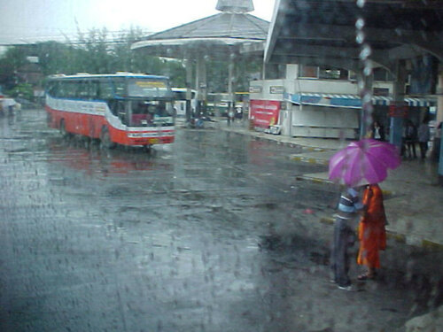 Смена климата привела к ливневым дождям зимой в Тайланде