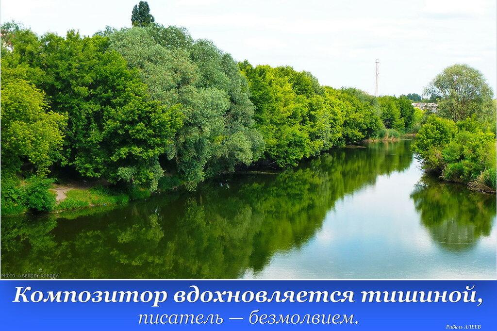 2015-06-11 P1180712 Композитор вдохновляется тишиной.jpg
