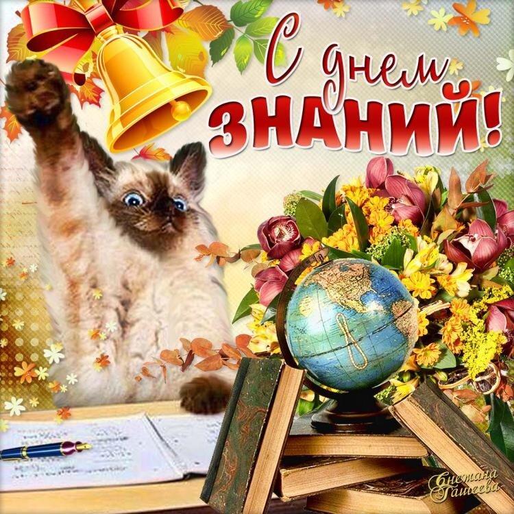 парнокопытные поздравительные открытки с первым сентября кароль