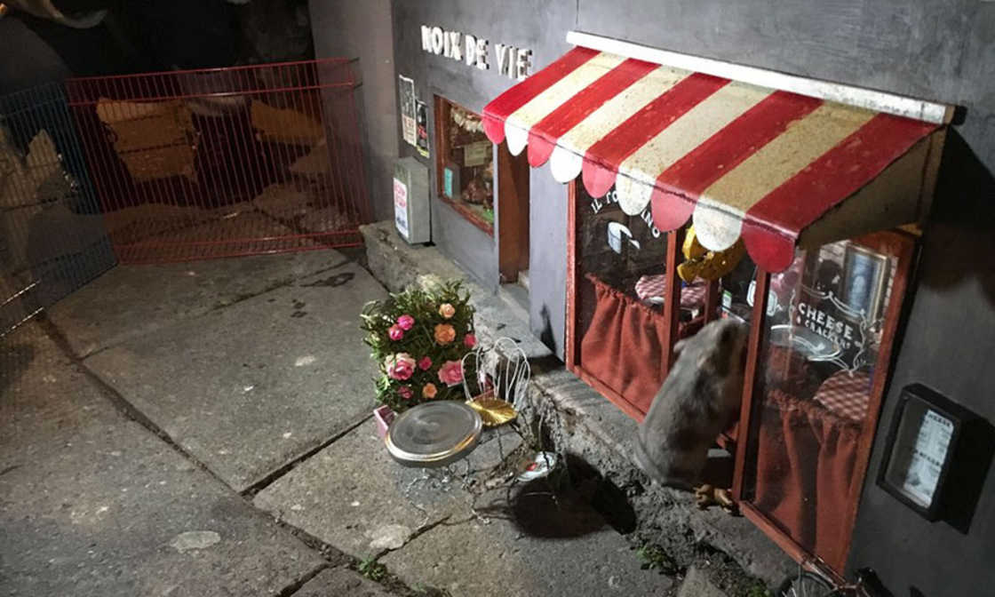 Mysterious miniature shops are appearing in the streets of Sweden