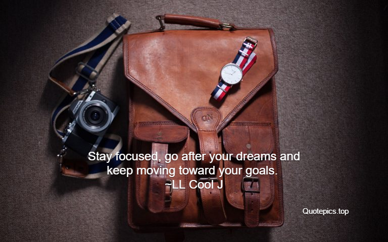 Stay focused, go after your dreams and keep moving toward your goals. ~LL Cool J