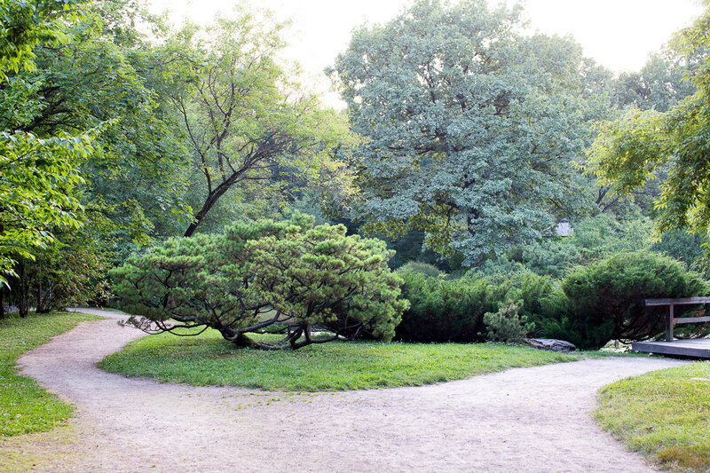 Японский сад в Ботаническом саду