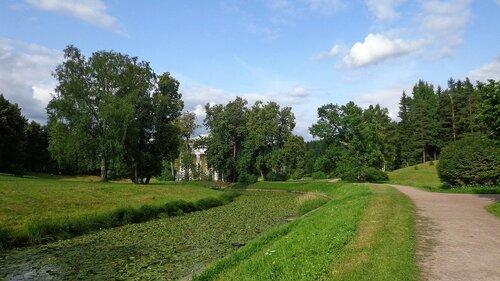 Зелёная речка