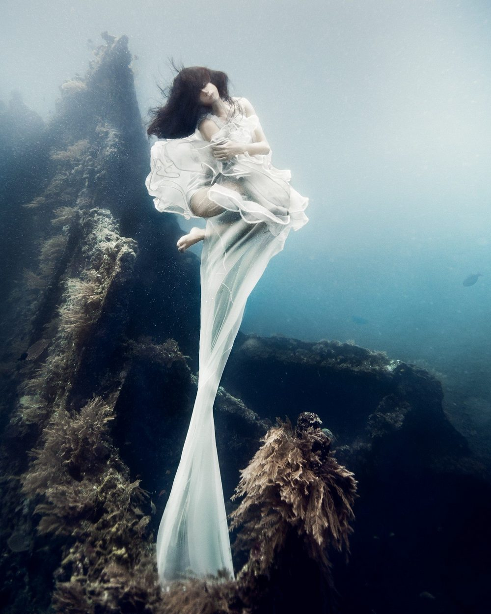 Scubashooters  Underwater Photography