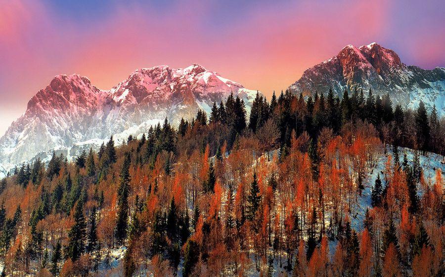 Картинка зима