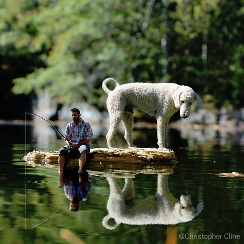 Друзья на рыбалке Пес в ожидании рыбки.