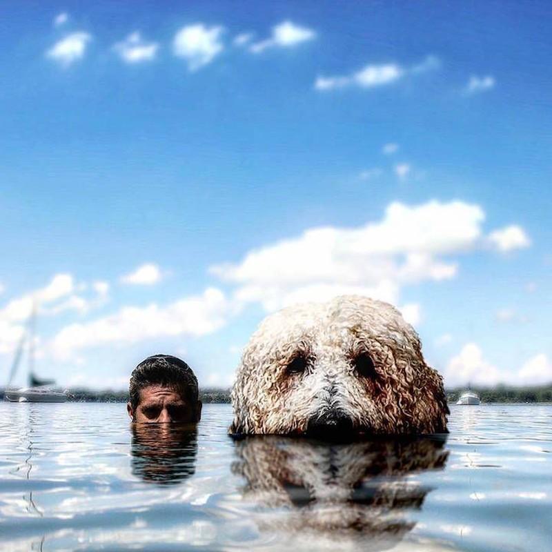 Плавательный сезон открыли Водные процедуры.