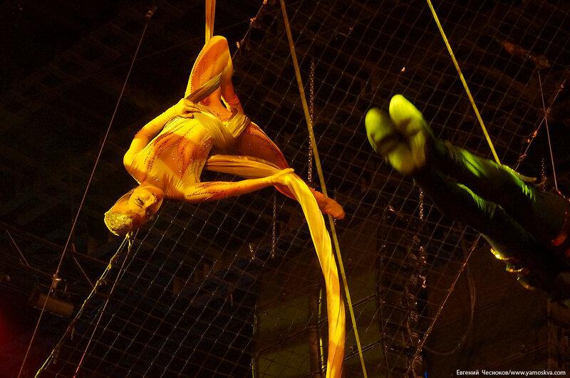 Осень. Цирк Костюк. гепарды. 31.10.16.01а..jpg