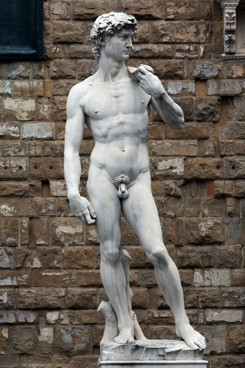 David_(Michelangelo)_marble_replica_1_2013_February.jpg