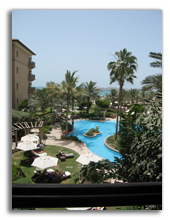 ОАЭ. The Ritz-Carlton Dubai 5*