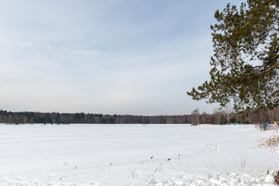 снег на пруду