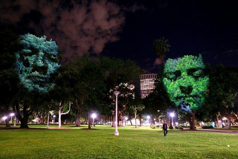Крейг Уолш.  Инсталляция Emergence в Сиднейском Гайд Парке